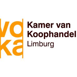 VOKA Limburg logo vierkant